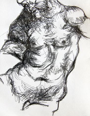 Cours arts plastiques adulte Toulouse - Anatomie crayon