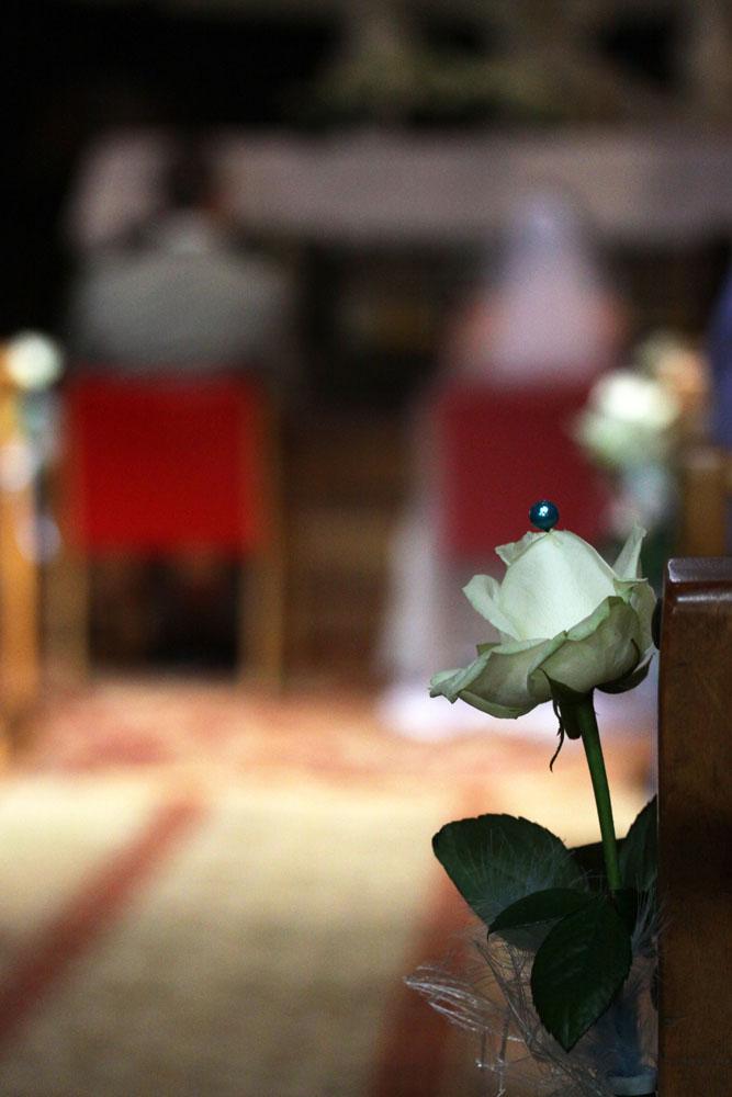 Photographe mariage Montauban - Détail d'une rose