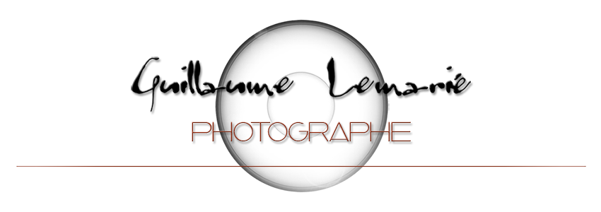 photographe sur Toulouse / photos de mariage et shooting photo