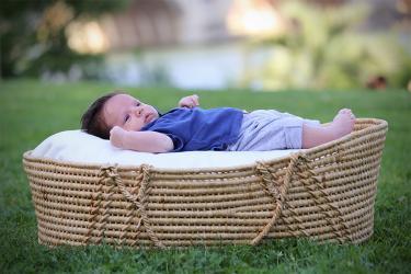 Photgraphe bébé